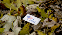 "An ""I voted"" sticker sits atop a pile of fallen leaves on the ground."