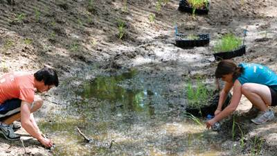 Students work to restore Plaster Creek.