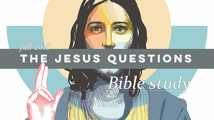 Jesus Questions Bible study banner
