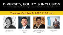 Diversity, Equity, and Inclusion panel members