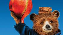 Student Activities Office - Paddington 2