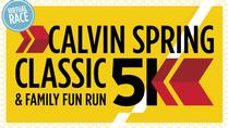 Minnesota Network Virtual 5k Spring Classic