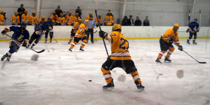 calvin college hockey