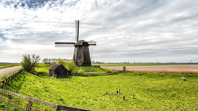 Alumni Travel: Dutch Landscapes