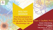 From Acinetobacter to Zika virus: an Overview of Life within the Clinical Microbiology Lab