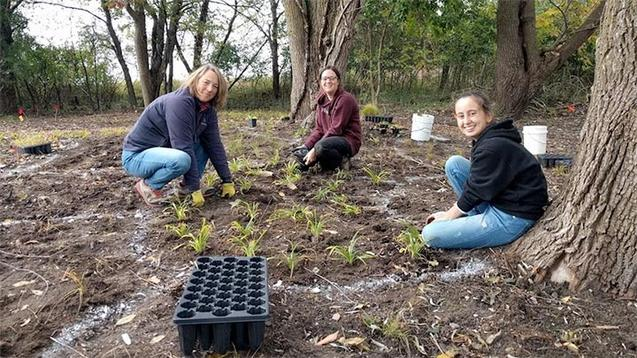 Volunteers planting native speicies.