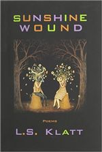 Sunshine Wound cover image.
