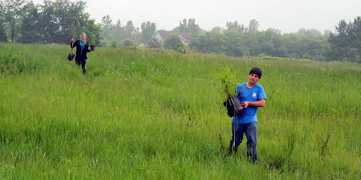 The Plaster Creek stewards plant rain gardens and bio-swales to hold down erosion and contamination.