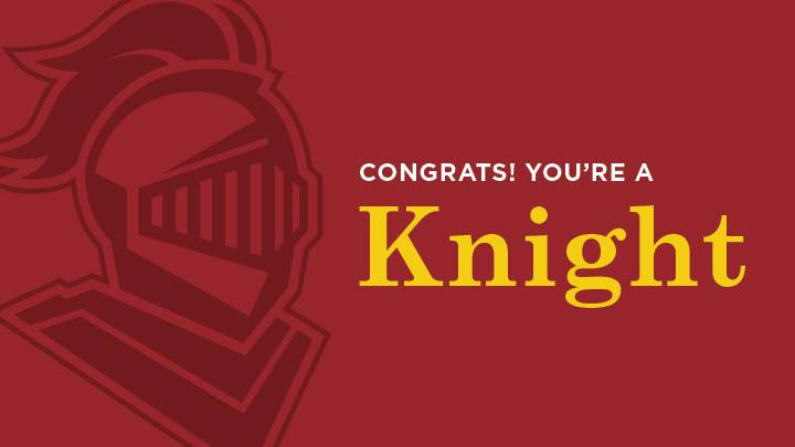 Congrats! You're a knight (banner graphic with knight's head)