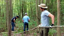 Stewardship Work Day