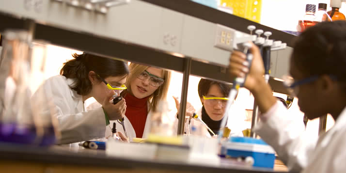 The Integrated Science Research Institute (ISRI) will award a total of $32,000 in scholarships to up to eight current and incoming students in 2009–2010 through a $581,000 grant from the National Science Foundation (NSF).