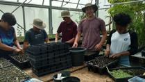 Ecosystem Preserve Volunteer Greenhouse Work Days