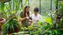 Two students doing research in a greenhouse on campus.