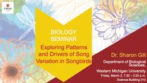Exploring patterns and Drivers of Song Variation in Songbirds