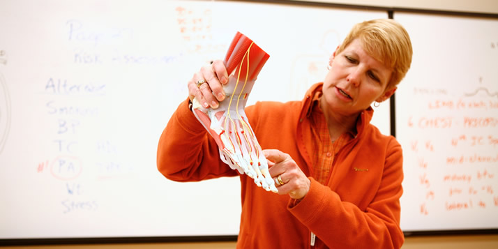 Kinesiology And Exercise Science what is major in college