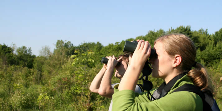 Calvin students Jodi Unema and Josh Garone work as summer preserve stewards in Calvin's 90-acre Ecosystem Preserve and dive into some bird-monitoring right after the 08-09 school year was done.